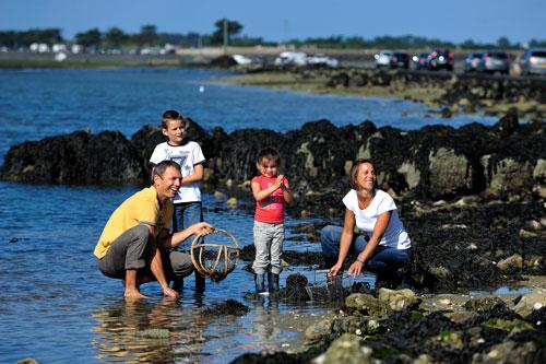 """""""Pêche à pied"""" an der Passage du Gois ist ein Spaß für die ganze Familie."""