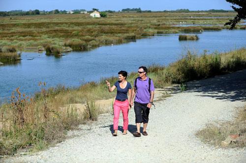 Der Polder von Sébastopol auf der Ile de Noirmoutier ist ein intaktes Naturschutzgebiet.