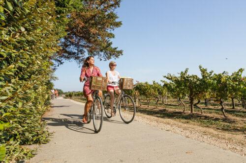Zwei Radfahrer fahren auf der Ile de Ré